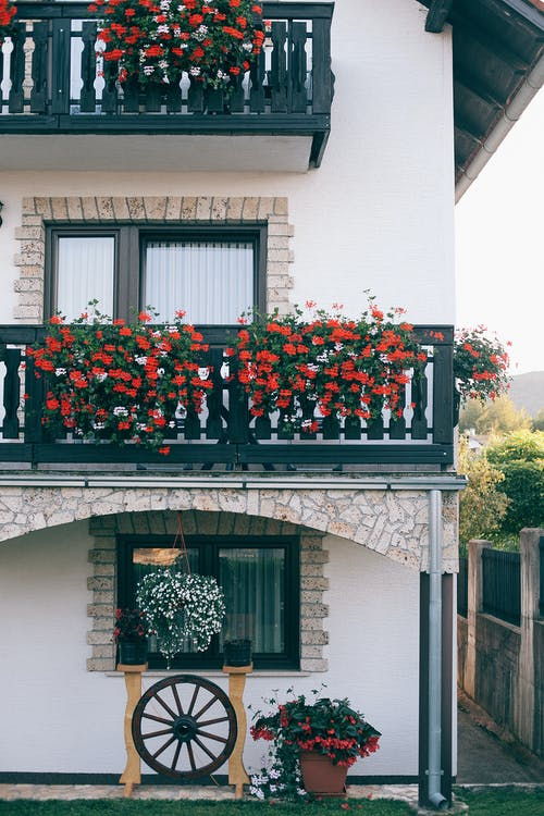 A Multifamily Residential Property with the Balconies of the Upper Stories Decorated with Red Blooms and the Lowest Window Sporting a White Bush